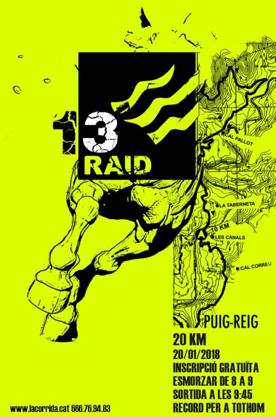 Raid 2018